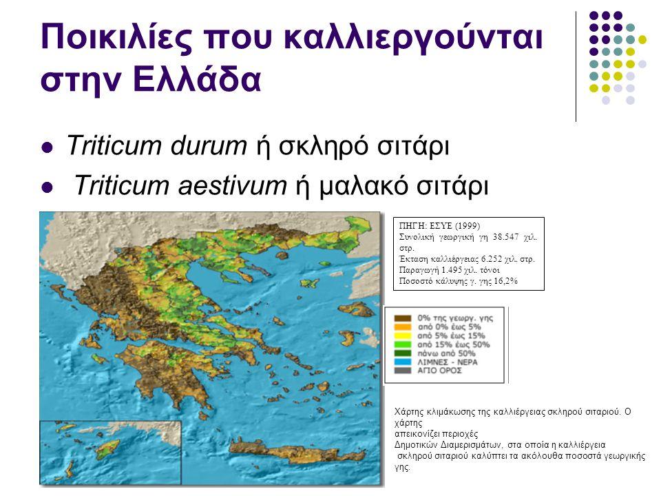 Ποικιλίες που καλλιεργούνται στην Ελλάδα