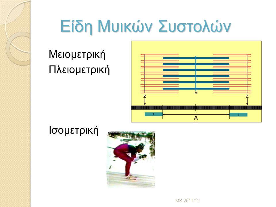 Είδη Μυικών Συστολών Μειομετρική Πλειομετρική Ισομετρική MS 2011/12