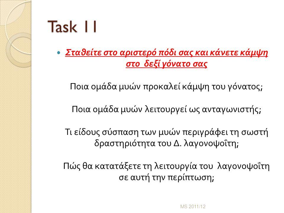 Task 11