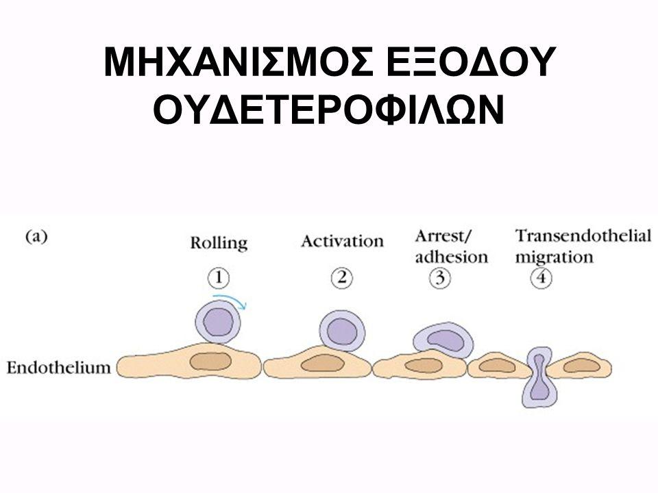 ΜΗΧΑΝΙΣΜΟΣ ΕΞΟΔΟΥ ΟΥΔΕΤΕΡΟΦΙΛΩΝ