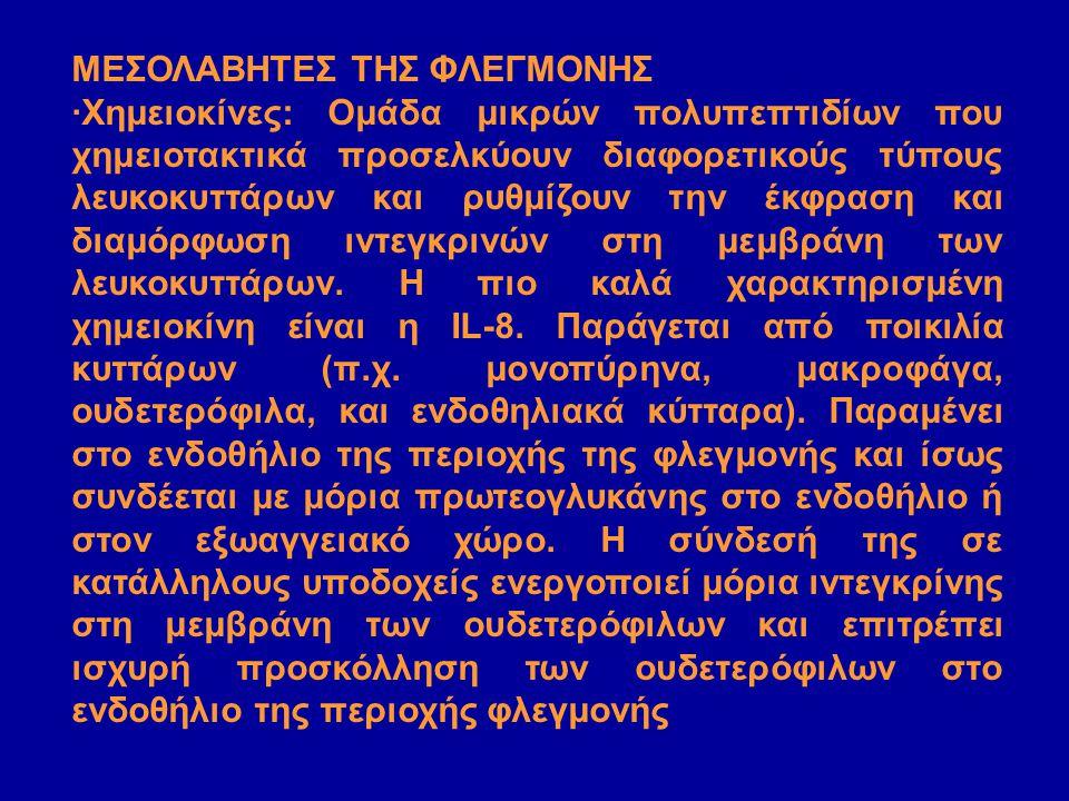 ΜΕΣΟΛΑΒΗΤΕΣ ΤΗΣ ΦΛΕΓΜΟΝΗΣ