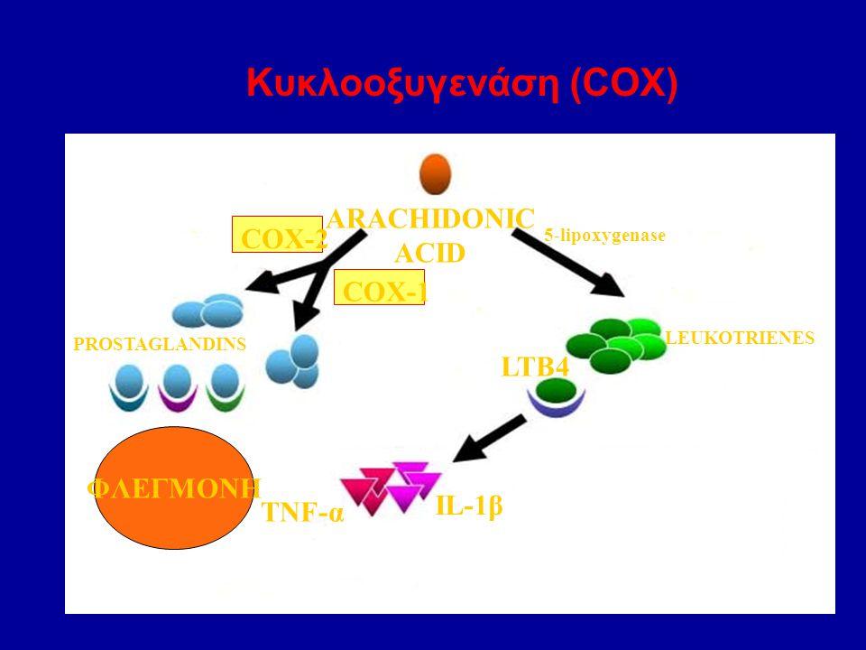 Κυκλοοξυγενάση (COX) ARACHIDONIC ACID COX-2 COX-1 LTB4 ΦΛΕΓΜΟΝΗ IL-1β