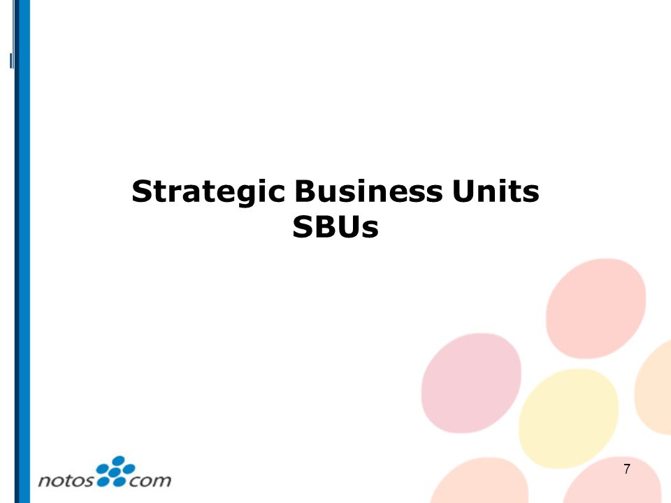 Strategic Business Units SBUs