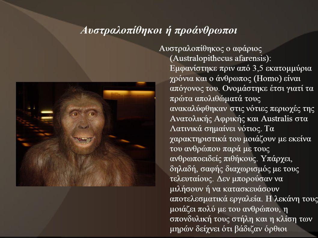 Αυστραλοπίθηκοι ή προάνθρωποι