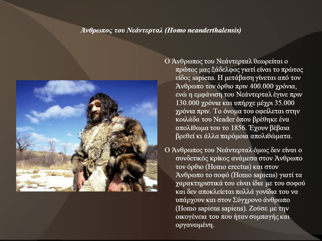 Άνθρωπος του Νεάντερταλ (Homo neanderthalensis)