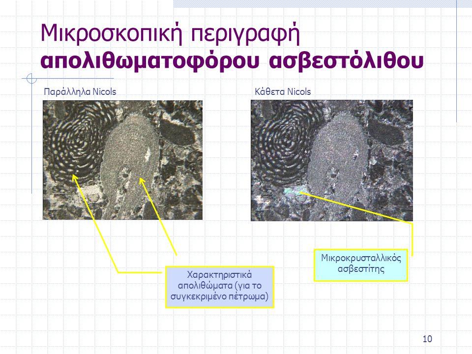 Μικροσκοπική περιγραφή απολιθωματοφόρου ασβεστόλιθου