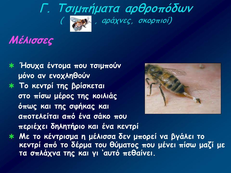 Γ. Τσιμπήματα αρθροπόδων ( , αράχνες, σκορπιοί)