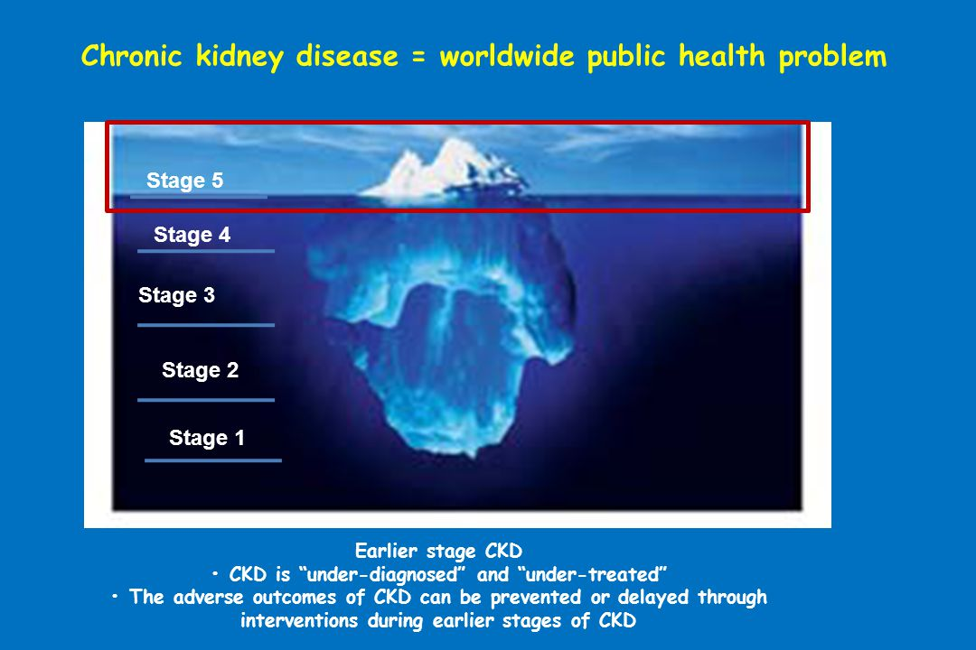 Chronic kidney disease = worldwide public health problem