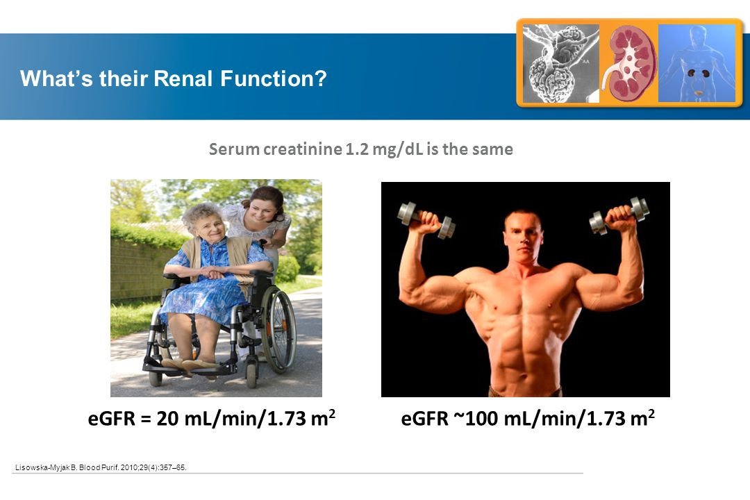 What's their Renal Function