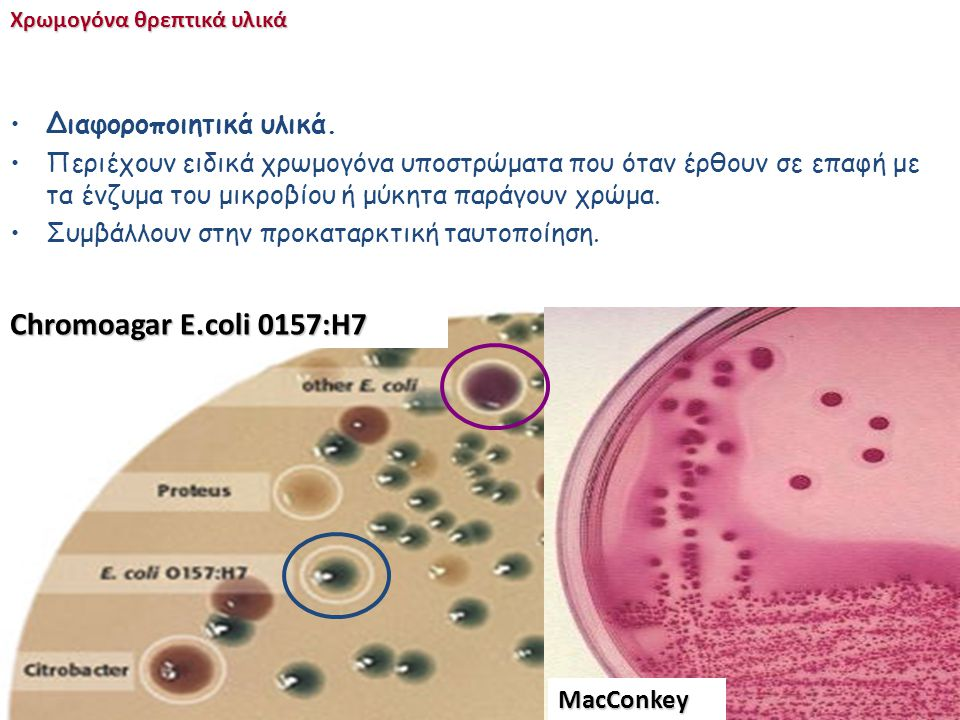 E.coli Chromoagar E.coli 0157:H7 Διαφοροποιητικά υλικά.