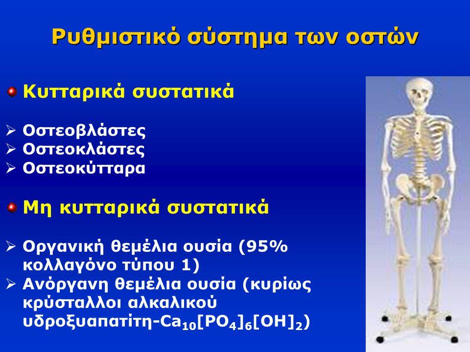 Ρυθμιστικό σύστημα των οστών
