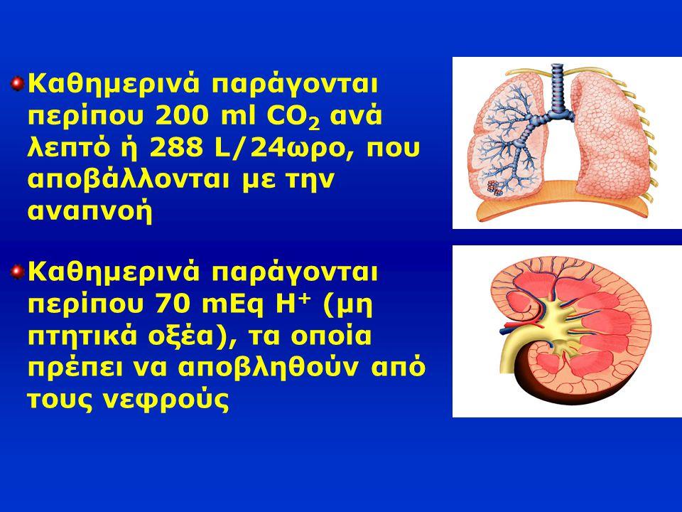 Καθημερινά παράγονται περίπου 200 ml CO2 ανά λεπτό ή 288 L/24ωρο, που αποβάλλονται με την αναπνοή