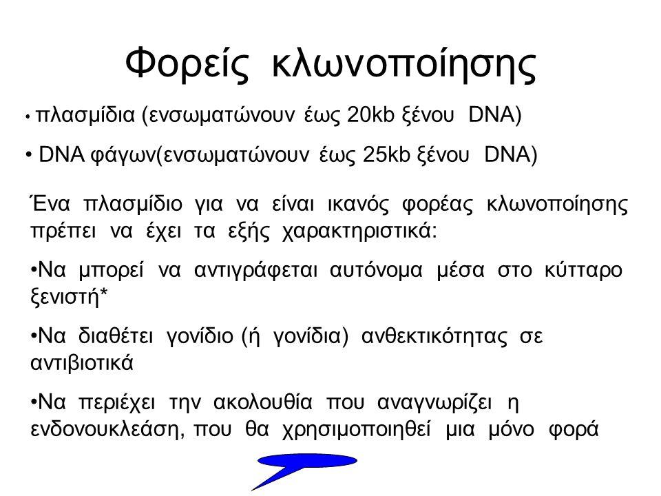 Φορείς κλωνοποίησης DNA φάγων(ενσωματώνουν έως 25kb ξένου DNA)