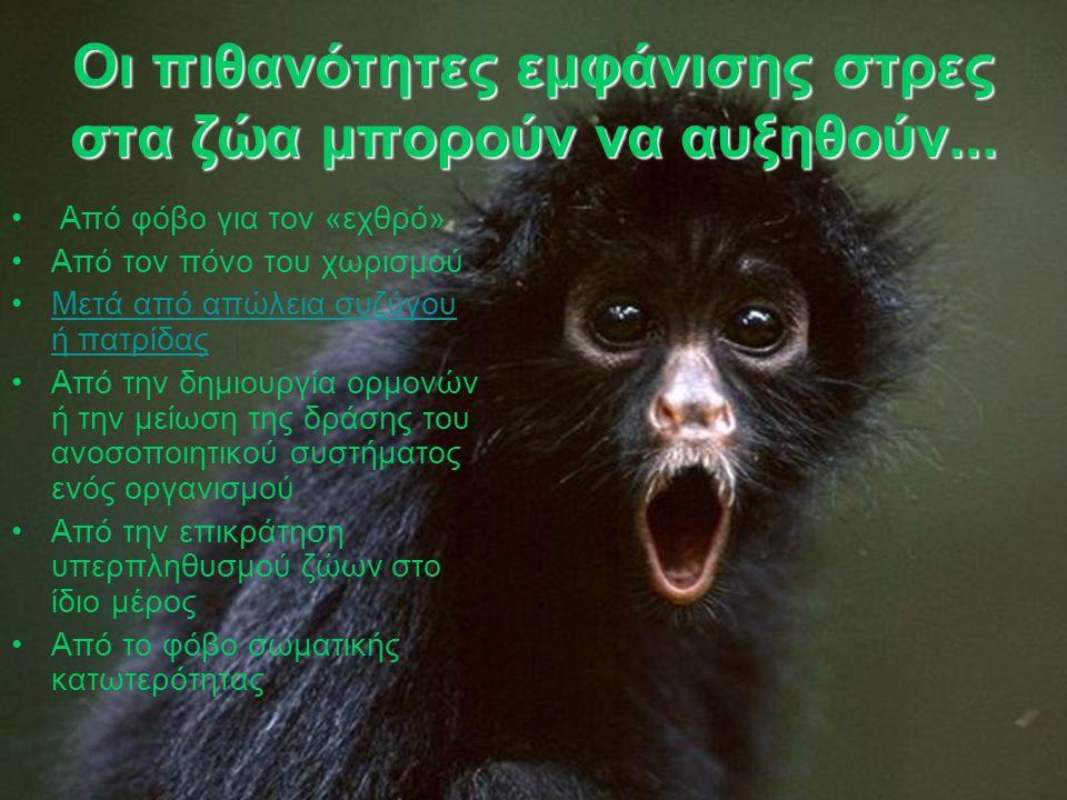 Οι πιθανότητες εμφάνισης στρες στα ζώα μπορούν να αυξηθούν...