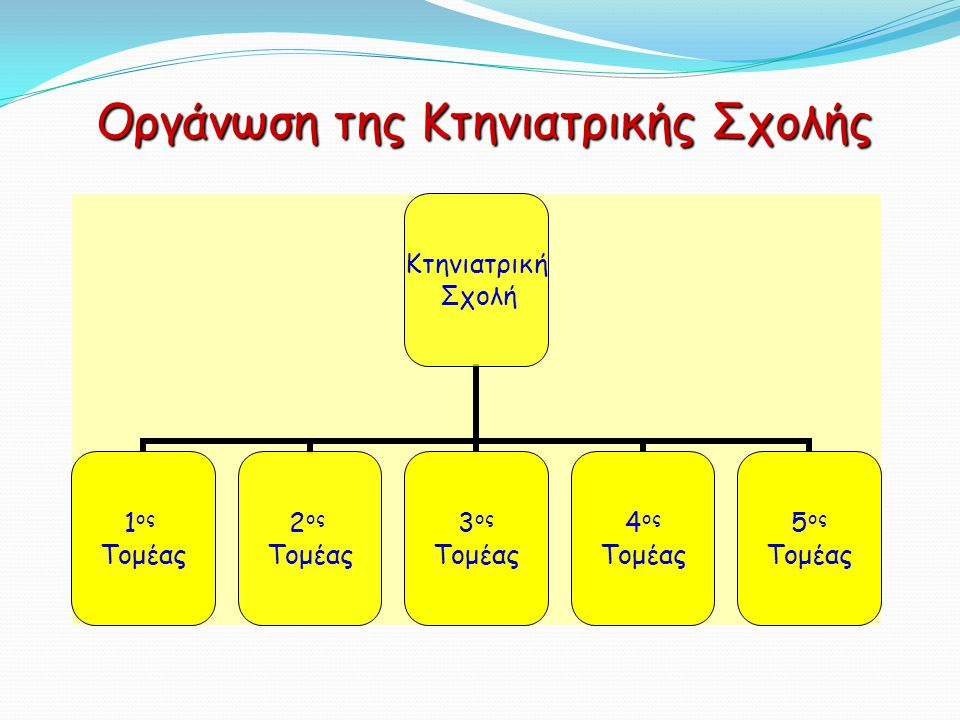 Οργάνωση της Κτηνιατρικής Σχολής