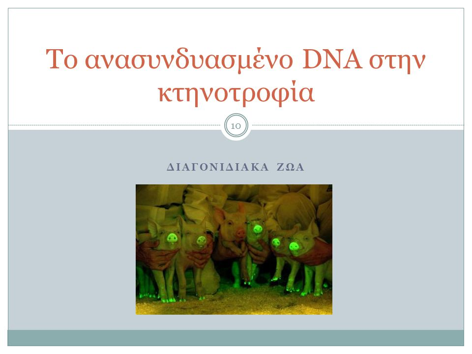 Το ανασυνδυασμένο DNA στην κτηνοτροφία