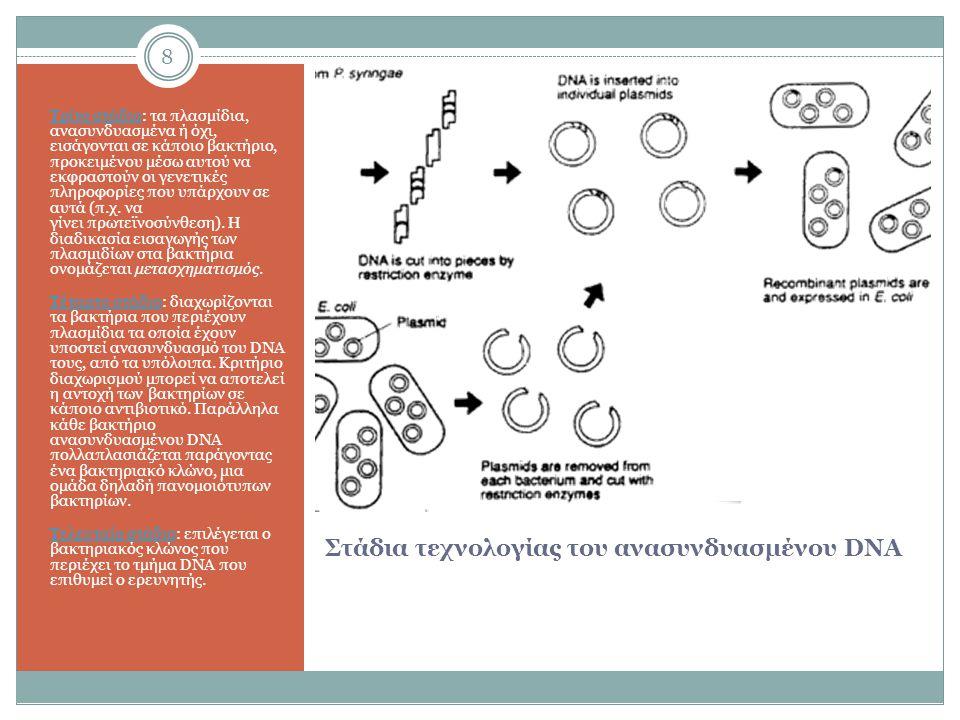 Στάδια τεχνολογίας του ανασυνδυασμένου DNA