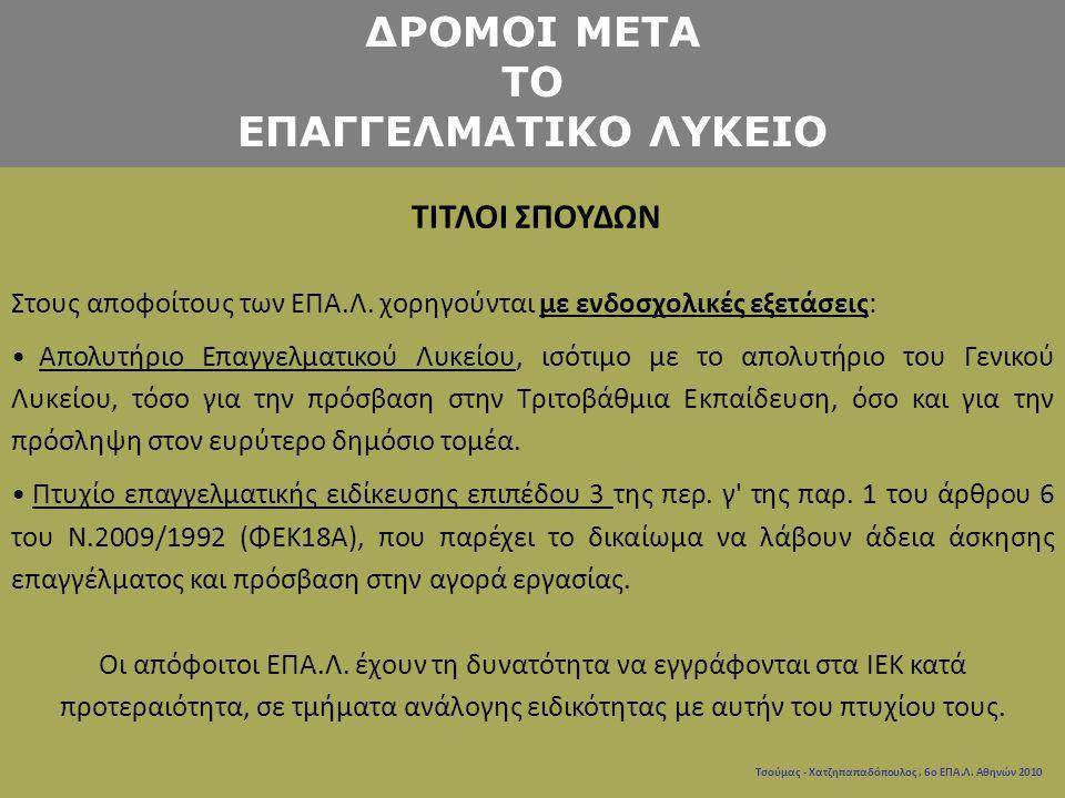 ΔΡΟΜΟΙ ΜΕΤΑ ΤΟ ΕΠΑΓΓΕΛΜΑΤΙΚΟ ΛΥΚΕΙΟ