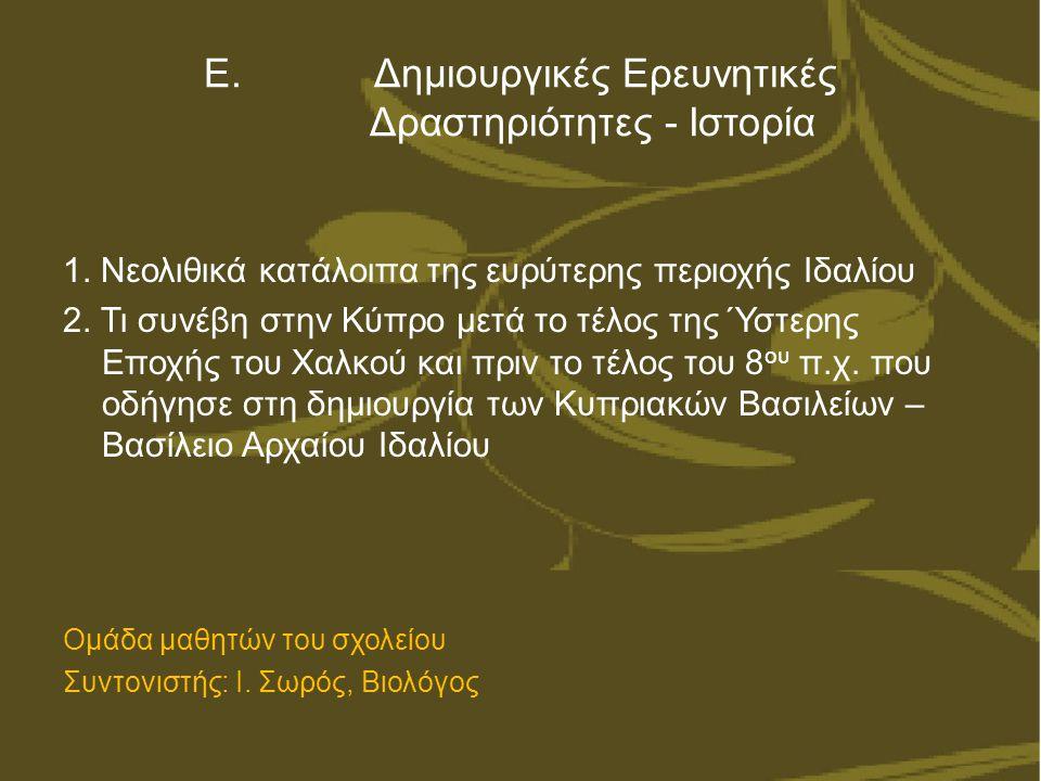 Ε. Δημιουργικές Ερευνητικές Δραστηριότητες - Ιστορία