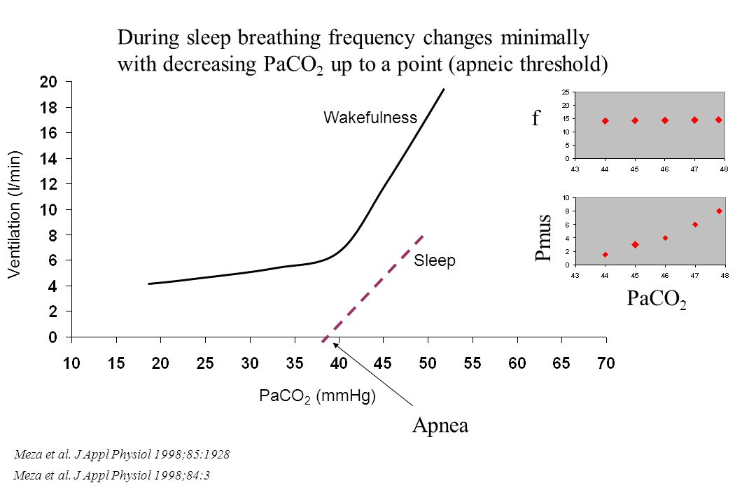 During sleep breathing frequency changes minimally