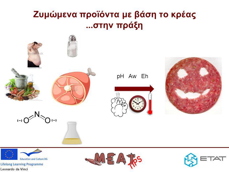 Ζυμώμενα προϊόντα με βάση το κρέας ...στην πράξη