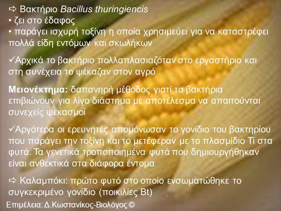 Βακτήριο Bacillus thuringiencis ζει στο έδαφος