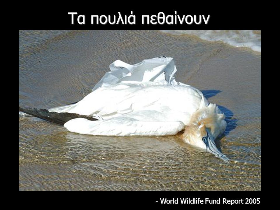 - World Wildlife Fund Report 2005