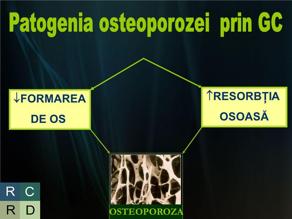 Patogenia osteoporozei prin GC