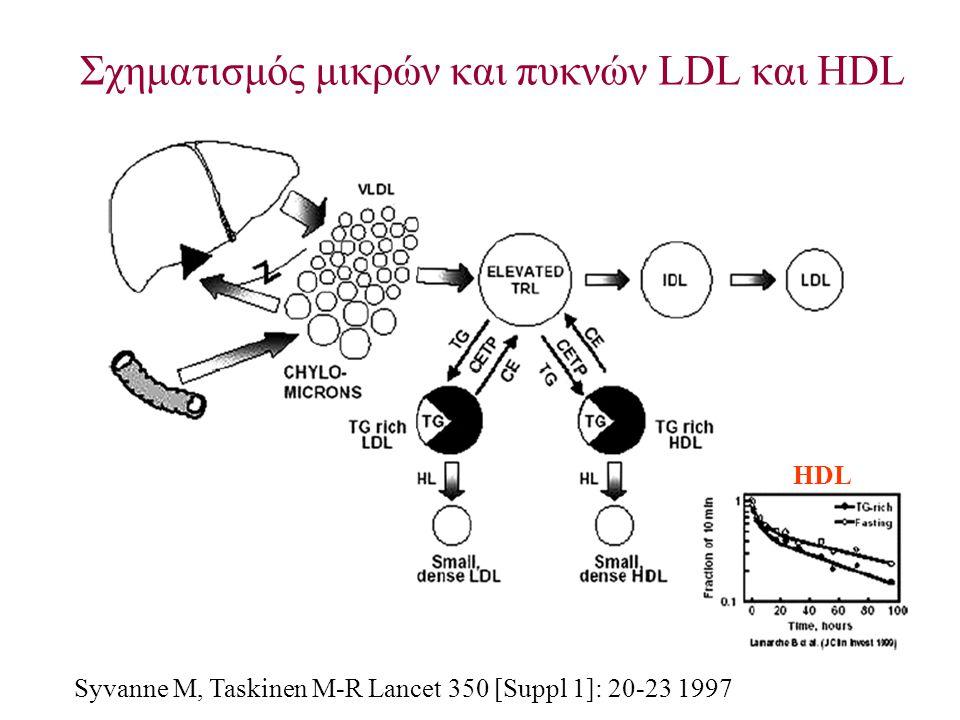 Σχηματισμός μικρών και πυκνών LDL και HDL