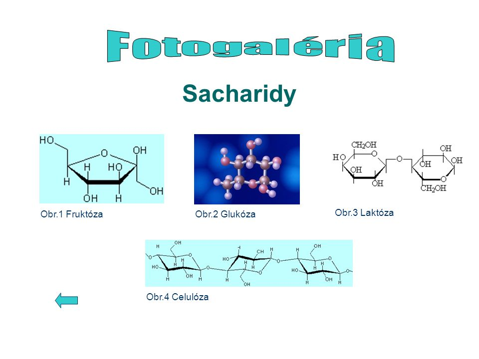 Sacharidy Fotogaléria Obr.3 Laktóza Obr.1 Fruktóza Obr.2 Glukóza