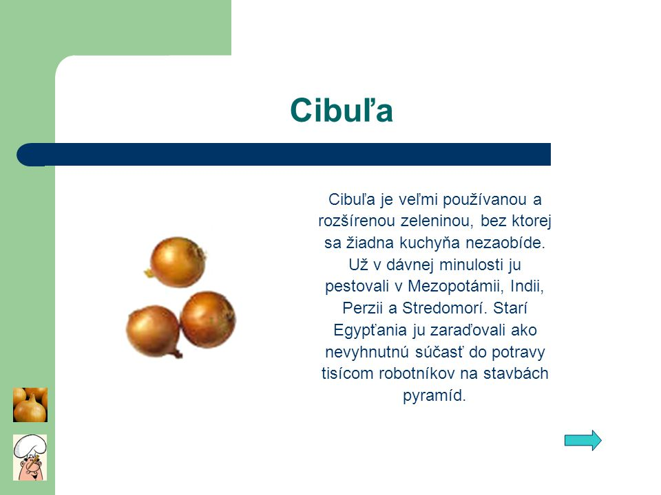 Cibuľa