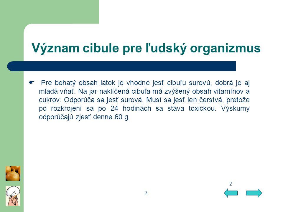 Význam cibule pre ľudský organizmus
