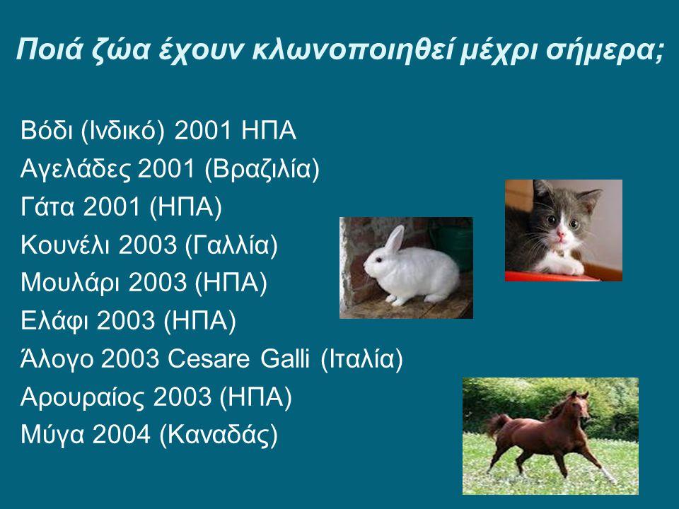 Ποιά ζώα έχουν κλωνοποιηθεί μέχρι σήμερα;