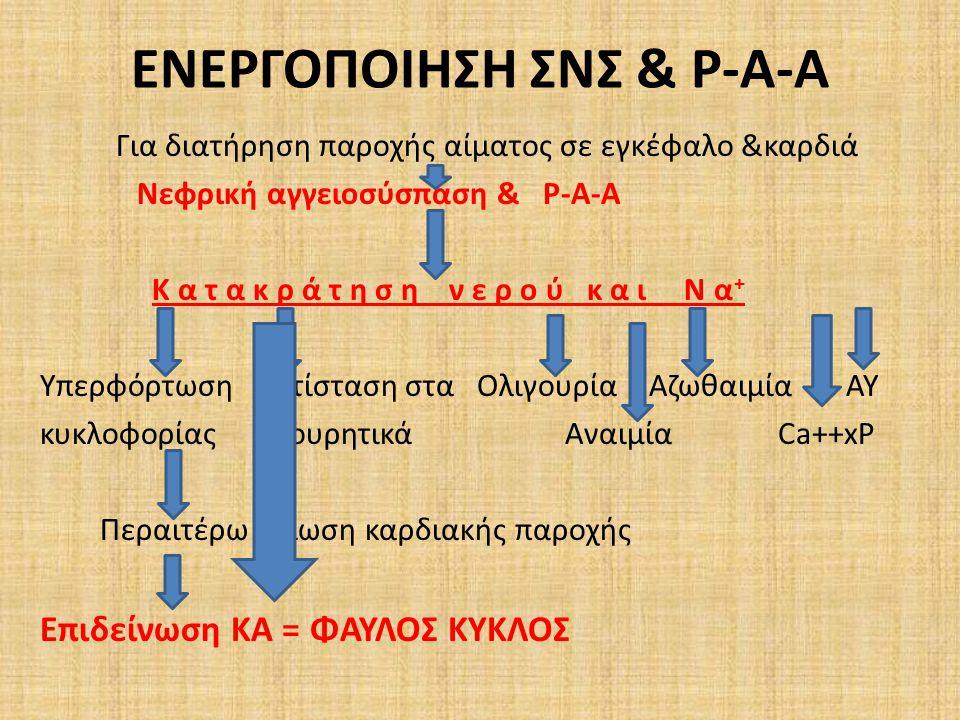 ΕΝΕΡΓΟΠΟΙΗΣΗ ΣΝΣ & Ρ-Α-Α