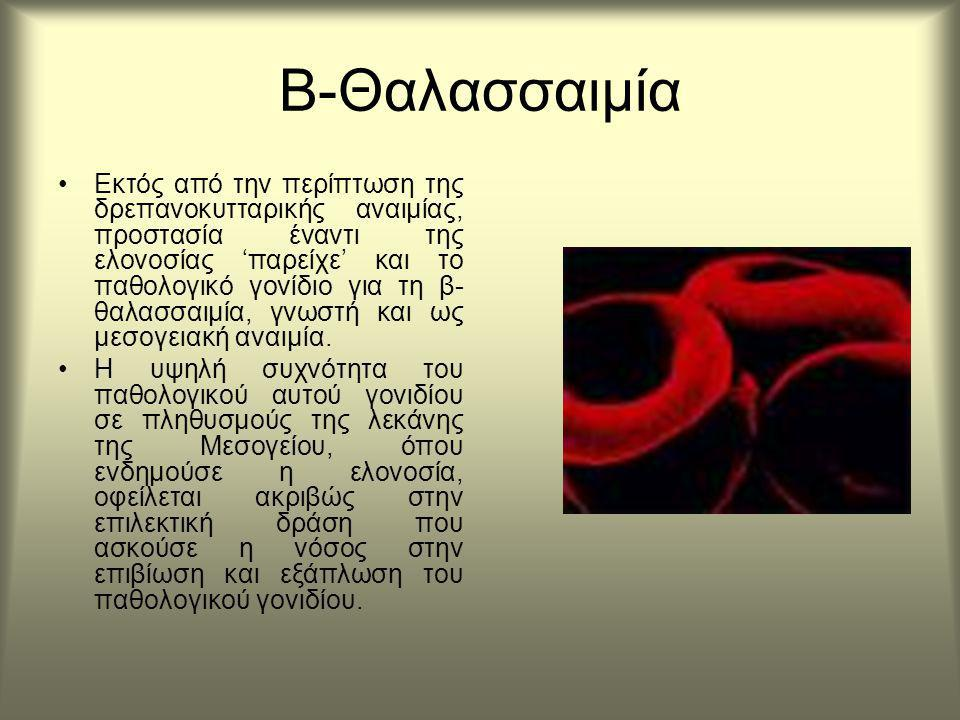 Β-Θαλασσαιμία