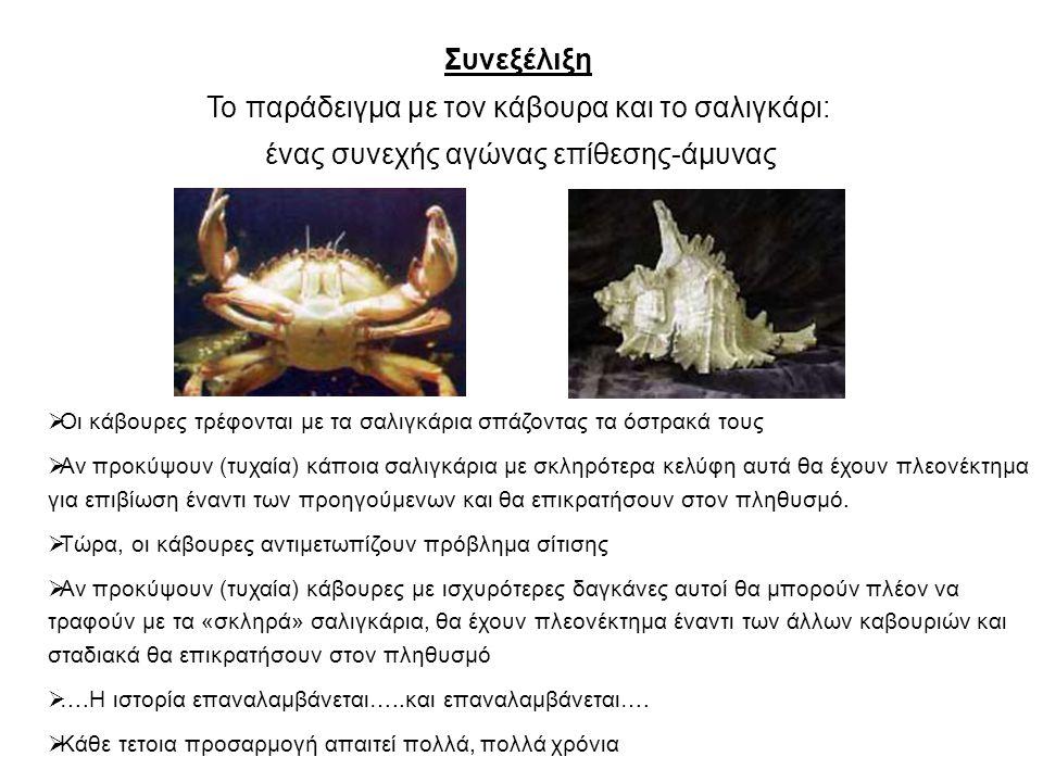 Το παράδειγμα με τον κάβουρα και το σαλιγκάρι: