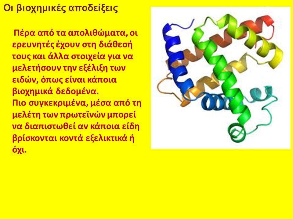 Οι βιοχημικές αποδείξεις