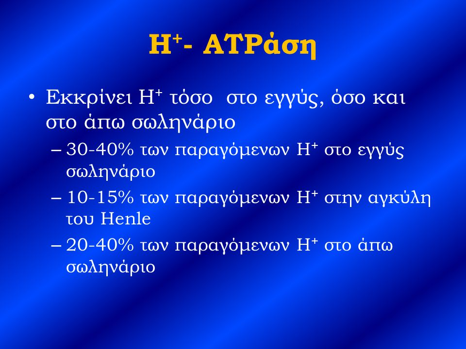 H+- ATPάση Εκκρίνει H+ τόσο στο εγγύς, όσο και στο άπω σωληνάριο