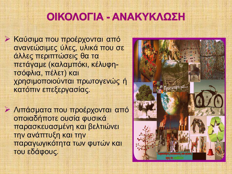 ΟΙΚΟΛΟΓΙΑ - ΑΝΑΚΥΚΛΩΣΗ