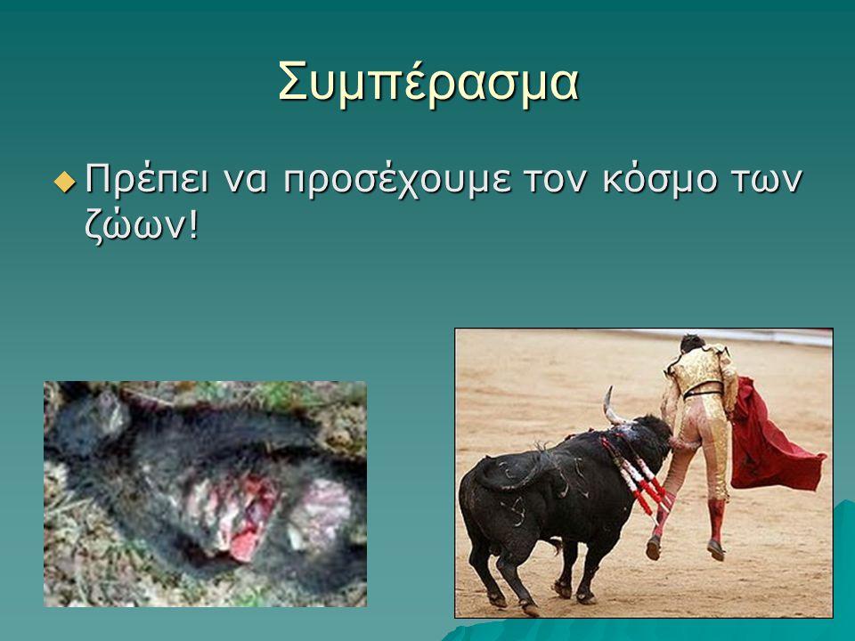 Συμπέρασμα Πρέπει να προσέχουμε τον κόσμο των ζώων!