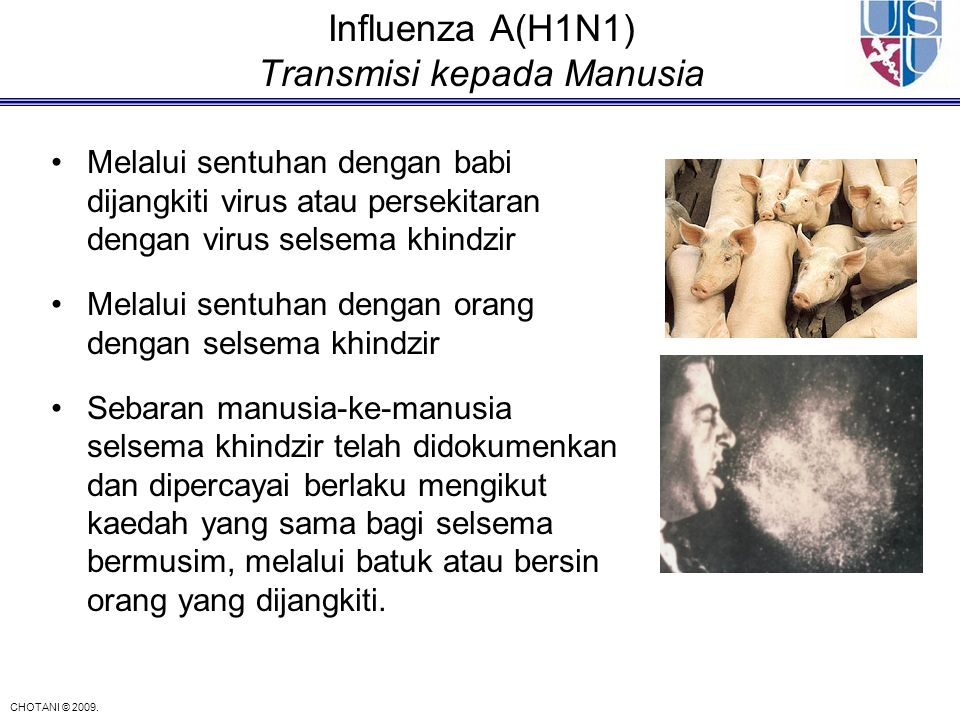 Influenza A(H1N1) Transmisi kepada Manusia
