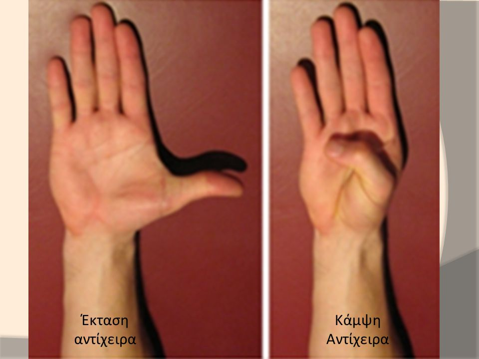 Έκταση αντίχειρα Κάμψη Αντίχειρα