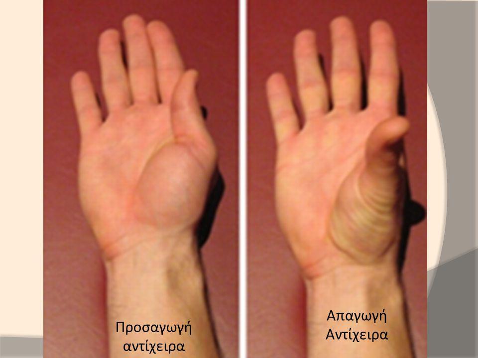Απαγωγή Αντίχειρα Προσαγωγή αντίχειρα