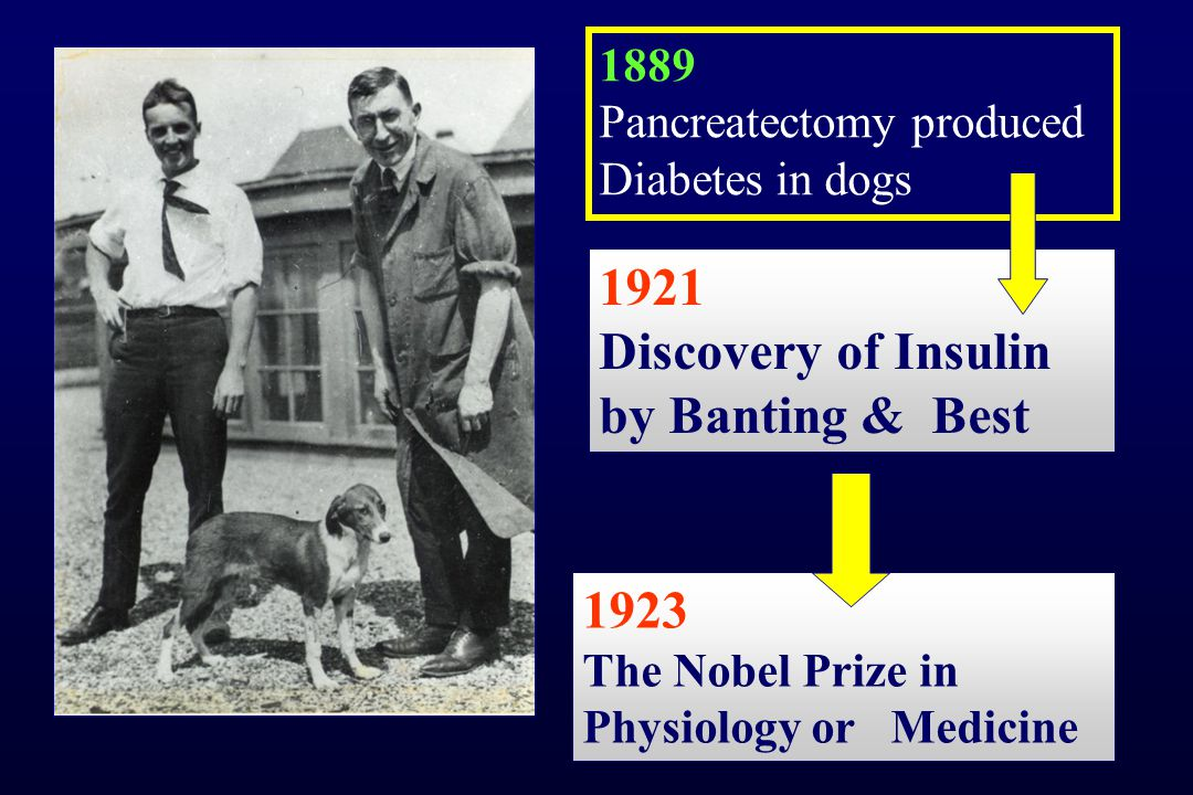 Discovery of Insulin by Banting & Best