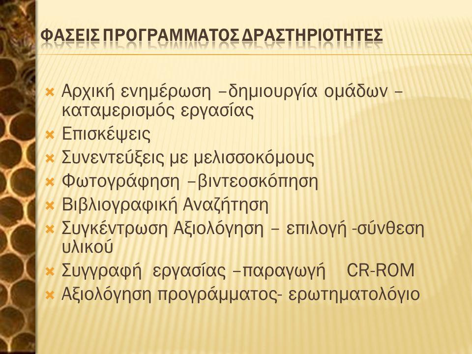 ΦΑΣΕΙΣ ΠΡΟΓΡΑΜΜΑΤΟΣ ΔΡΑΣΤΗΡΙΟΤΗΤΕΣ