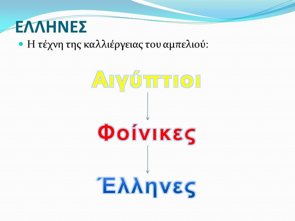 Αιγύπτιοι Φοίνικες Έλληνες
