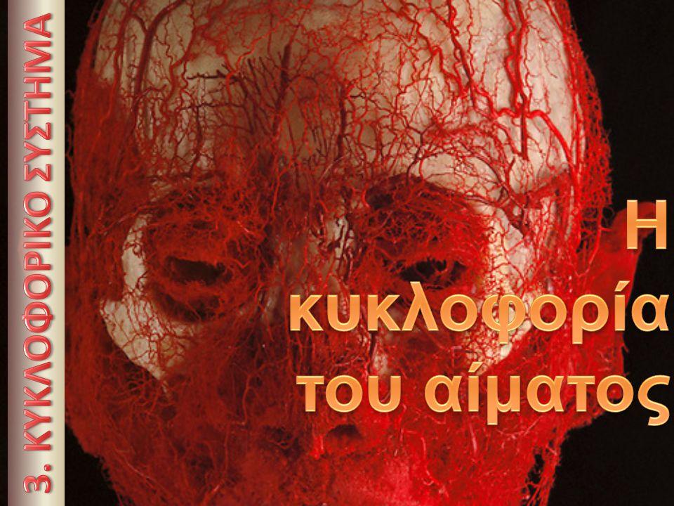 Η κυκλοφορία του αίματος