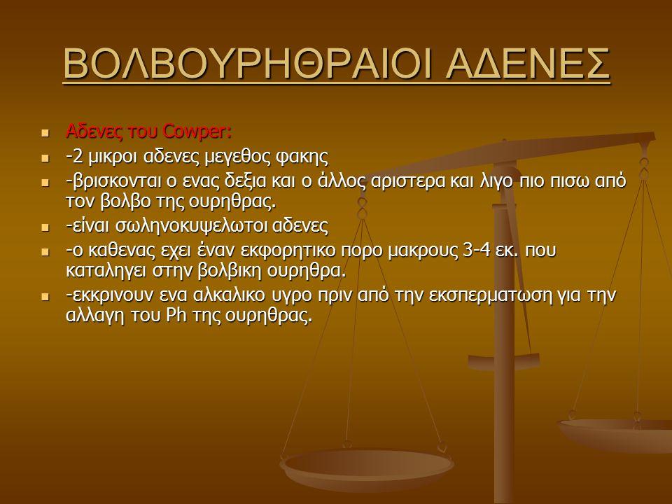 ΒΟΛΒΟΥΡΗΘΡΑΙΟΙ ΑΔΕΝΕΣ