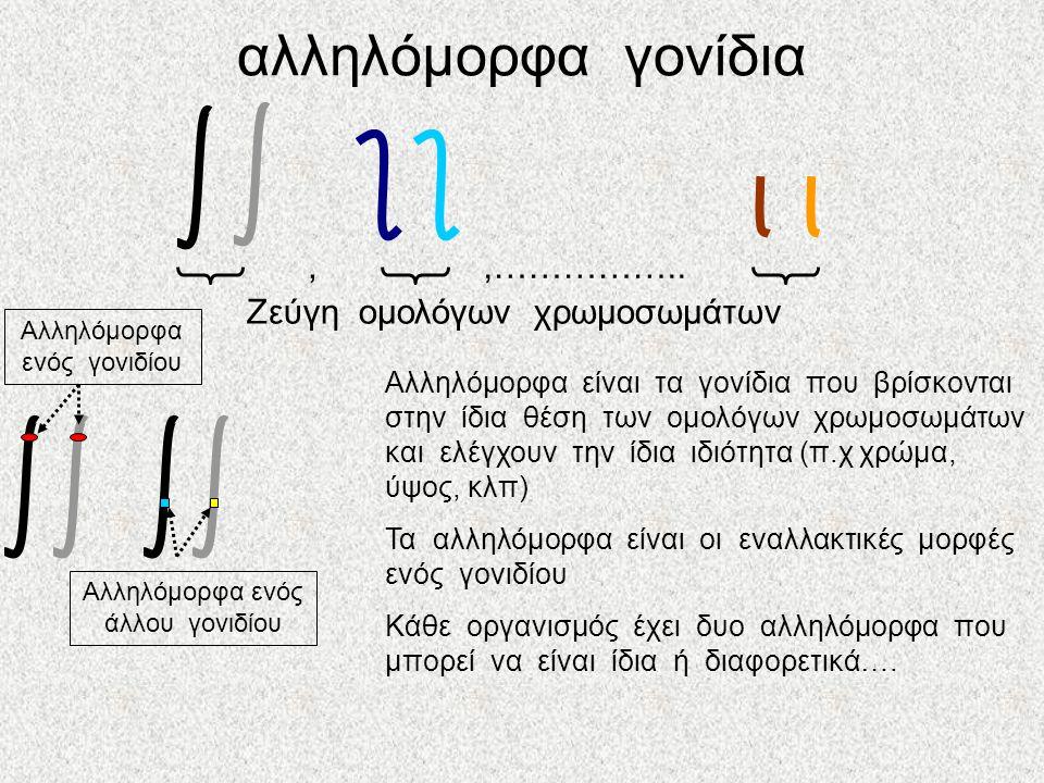 αλληλόμορφα γονίδια , ,…………….. Ζεύγη ομολόγων χρωμοσωμάτων