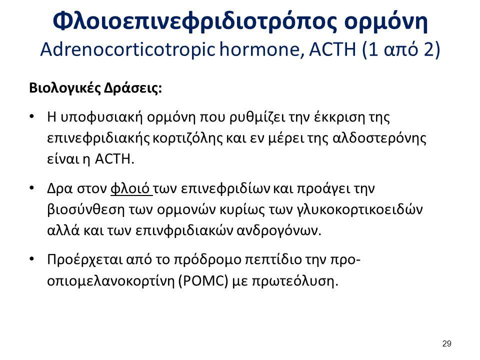 Φλοιοεπινεφριδιοτρόπος ορμόνη Adrenocorticotropic hormone, ACTH (2 από 2)